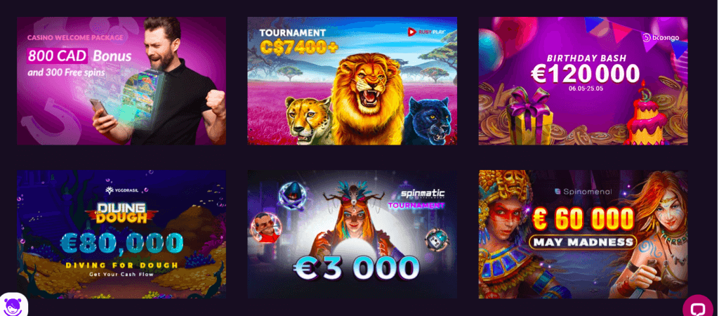 VBet Offers