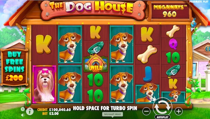 The Dog House Megaways slot